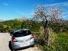 Mit dem Auto unterwegs zur Mandelblüte
