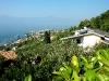 Unser Ferienhaus oberhalb von Torri del Benaco