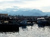 Spaziergang auf der Hafenmole