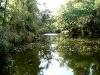 Auf dem Ropotamo River