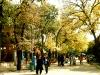Boulevard in Varna