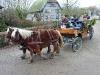 Pferdekutsche als Rundfahrt