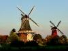 Zwillingsmühlen in der Abendsonne