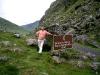 Ring of Kerry : Ballaghbeama Gap