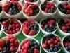 Köstliche Obstleckereien auf Byward Market