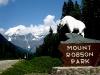 Blick zurück : Ende des Mt.Robson Parks