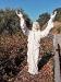 Heiligenstatue am Wegesrand