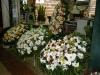 Blumenangebot in der Markthalle