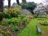 In Blandy\'s Garden