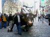 Börsen Bulle